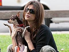 Elisabetta Canalis adopton nje qen