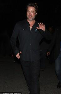 Brad Pitt me shenja në fytyrë
