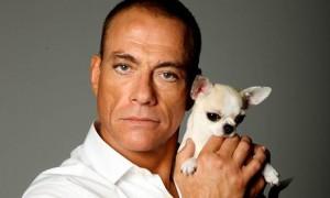 Van Damme: Ndiqni shembullin e profetit Muhamed