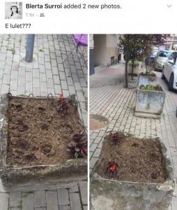 Blerta Syla-Surroi e ka një hall të madh